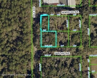 Details for 0 Hale, Brooksville, FL 34601