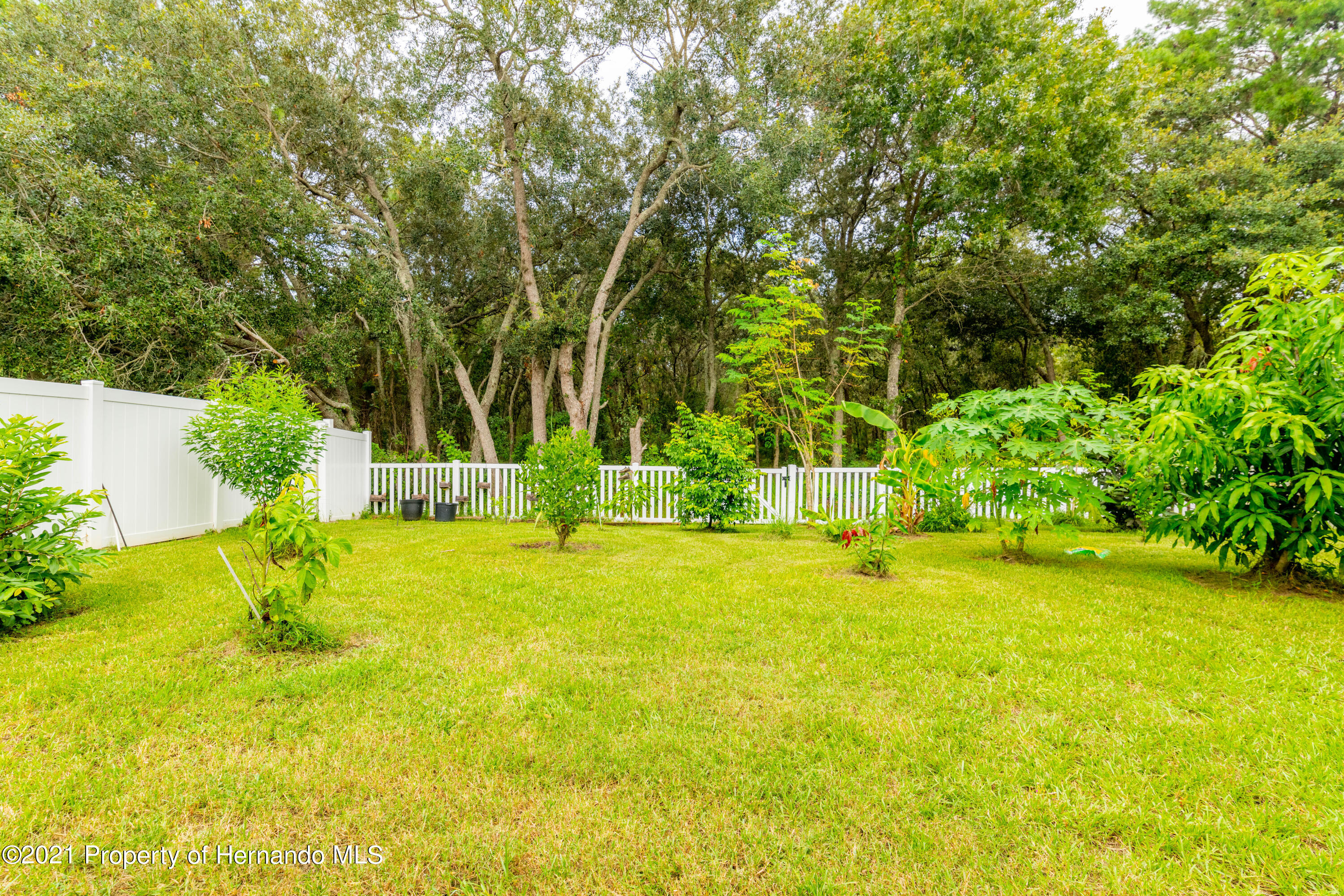 Listing photo id 32 for 13777 Covey Run Place