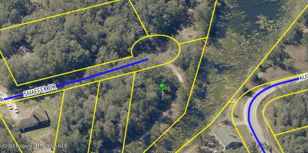 Details for 0000 Shaffer Drive, Ridge Manor, FL 33523