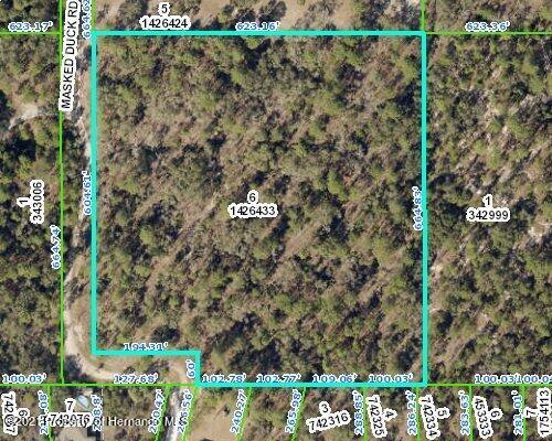 Details for 0 Masked Duck Road, Weeki Wachee, FL 34614