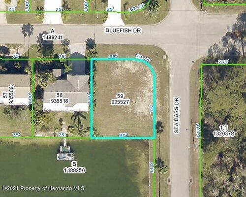 Listing Details for 4064 Bluefish Drive, Hernando Beach, FL 34607