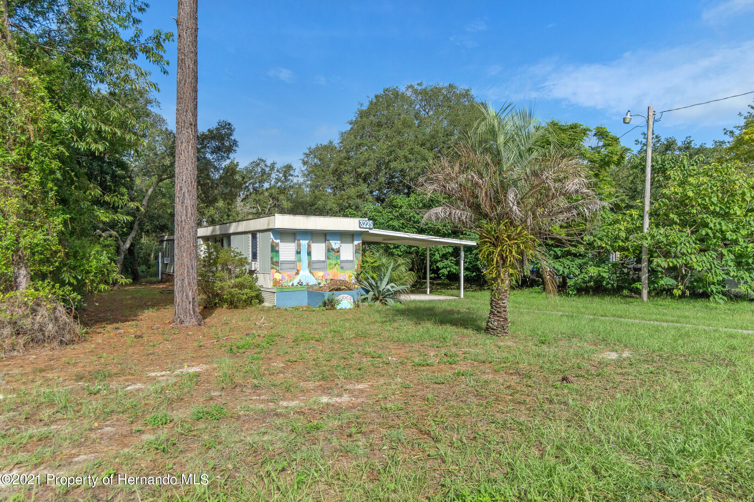 Details for 3225 Painters Street, Spring Hill, FL 34606