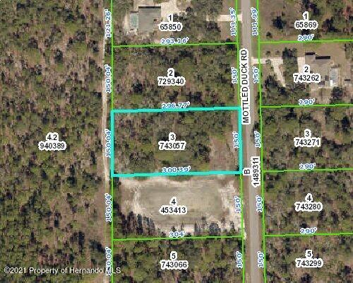 Listing Details for 13111 Mottled Duck Road, Weeki Wachee, FL 34614