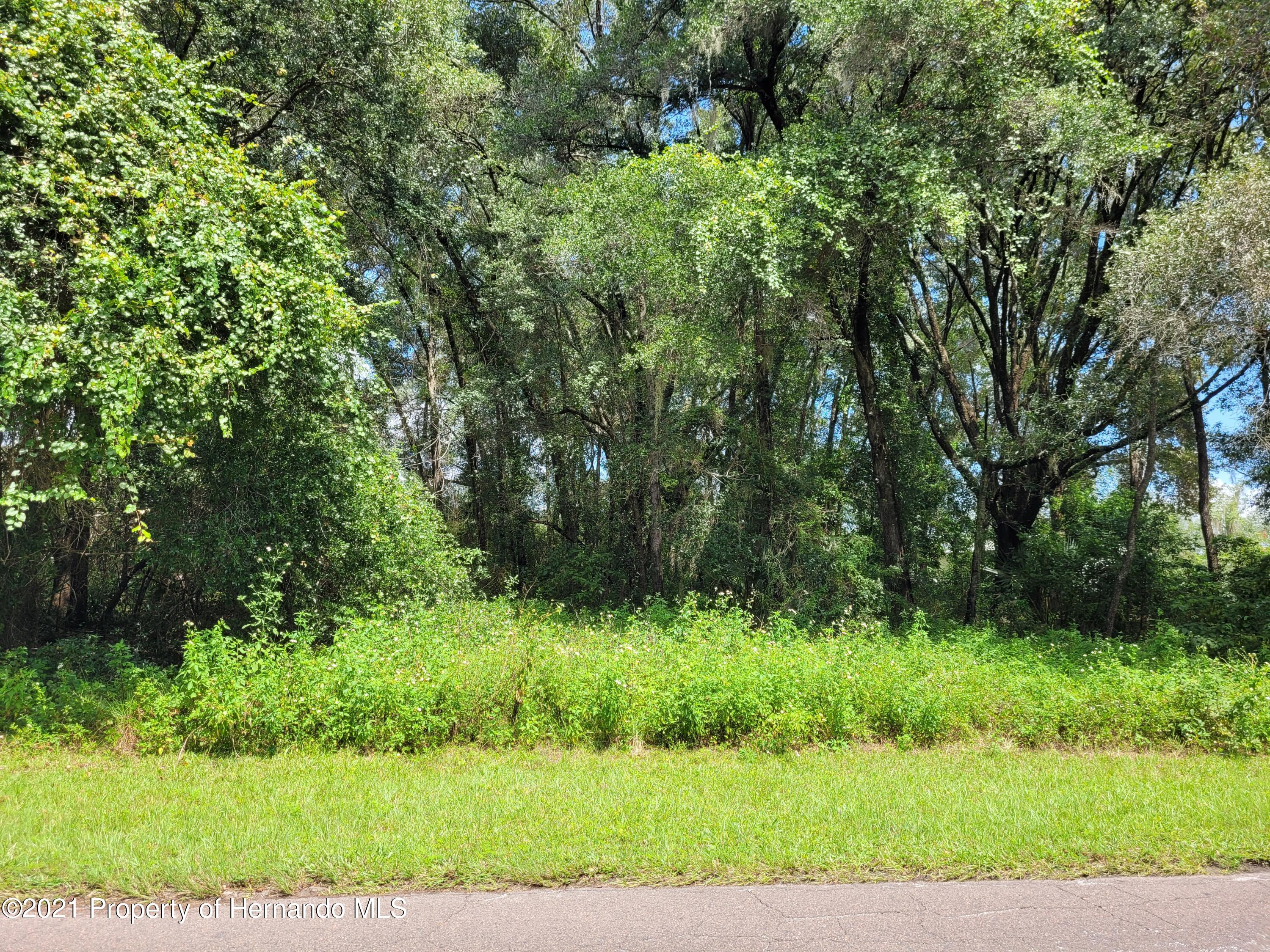 Listing Details for 3655 E Perry Street, Inverness, FL 34453