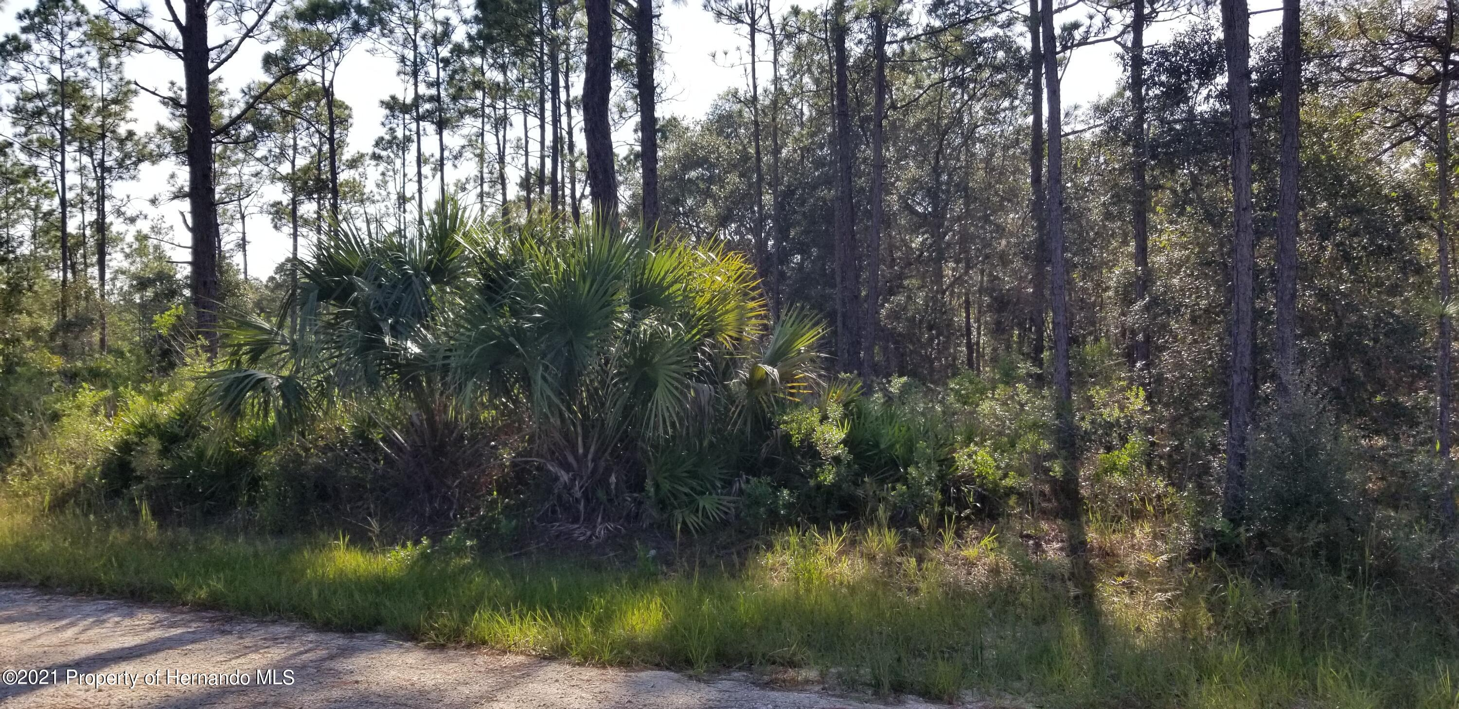 Listing photo id 2 for 0 Quinton Road