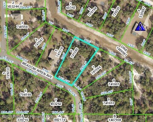 Listing Details for 00 Meadow Wren Avenue, Weeki Wachee, FL 34613