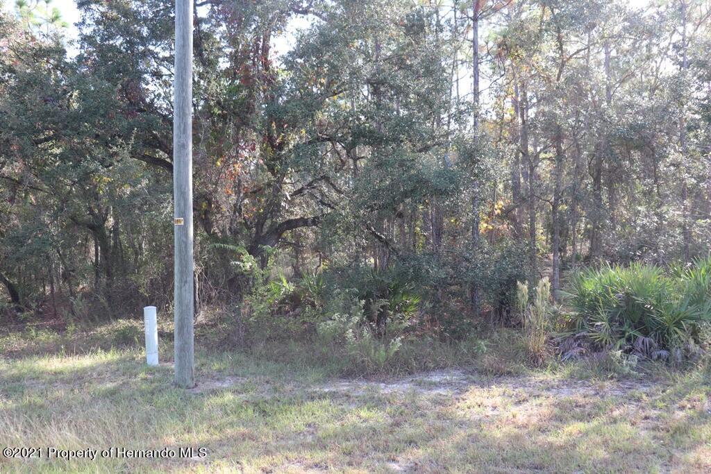 Details for 16144 Mount Sparrow Road, Weeki Wachee, FL 34614