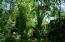 2 Apache Aspen column trees