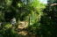 Path way to beautiful flower garden