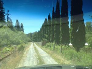1 Laribee Tract Road, Redcrest, CA 95569