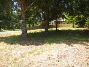 299 Vista Road, Shelter Cove, CA 95589