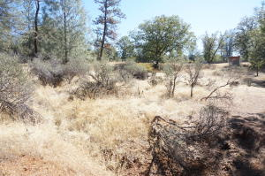 194 Pioneer Lane, Weaverville, CA 96093