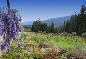655 Peach Tree Lane, Willow Creek, CA 95573