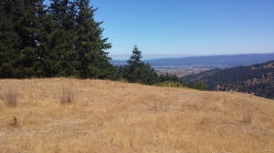 0000 Price Creek Road, Ferndale, CA 95536
