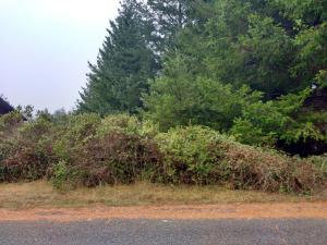 56 Nob Hill Road, Shelter Cove, CA 95589