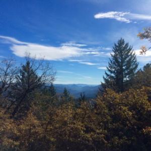 ±118 Acres Swayback Ridge None, Dinsmore, CA 95526