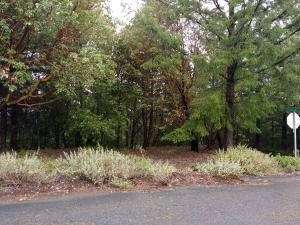 608 Toth Road, Shelter Cove, CA 95589