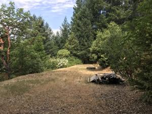 11c Coon Creek Road, Hawkins Bar, CA 95563