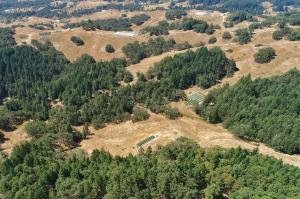 00 Private Road, Larabee Valley, CA 95526