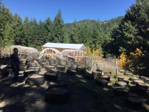 A Humboldt garden on a mountain