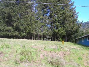 59 Nob Hill Road, Shelter Cove, CA 95589