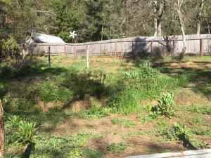 111 E Perch Creek Road, Orleans, CA 95556