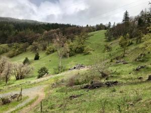 4837 Highway 36 None, Mad River, CA 95552