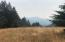 1501 Tim Mullen Road, Kneeland, CA 95549
