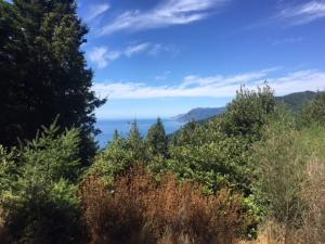 283 Parsons Road, Whitethorn, CA 95589