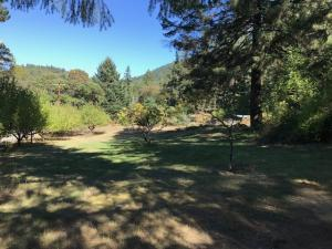 37 Neighbors Lane, Willow Creek, CA 95573