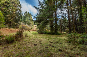 Lot 1 Anderson Lane, Trinidad, CA 95570