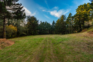 Lot 2 Anderson Lane, Trinidad, CA 95570