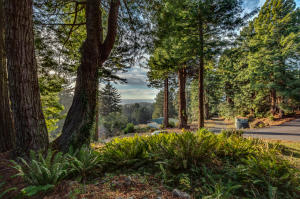 Lot 5 Anderson Lane, Trinidad, CA 95570