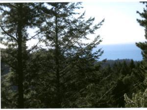221 Muskrat Circle, Shelter Cove, CA 95589