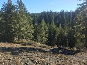 1000 Ruiz Canyon Drive, Out of County, CA 99999