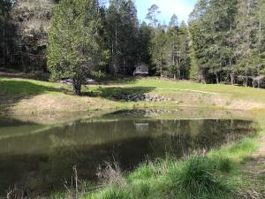 000 Thomas Road, Ettersburg, CA 95542