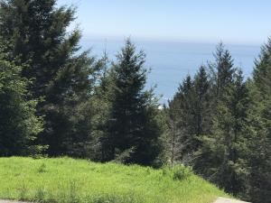 199 Parkview Road, Shelter Cove, CA 95589