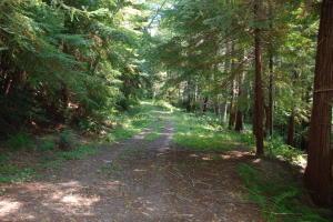 0000 Mckinnon Hill Road, Weitchpec, CA 95546