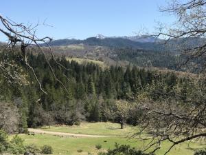 0000 Buck Mountain None, Dinsmore, CA 95526