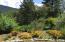 125 Oden Flat Road, Salyer, CA 95563