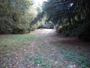 000 Puddin Lane, Fortuna, CA 95540