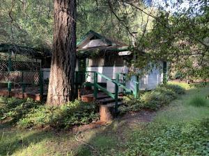 42208 Hwy 299, Willow Creek, CA 95573