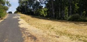 1030 Lot 2 Gassaway Road, lot 2 of, McKinleyville, CA 95519