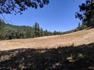 1111&1280 Anne Grace Lane, Ruth Lake, CA 95526