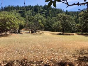 ±50 Acres South Fork Road, Salyer, CA 95563