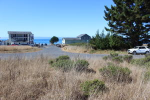 1110 Lower Pacific Drive, Whitethorn, CA 95589