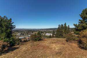 ±24 Acres Loop Road, Fortuna, CA 95540