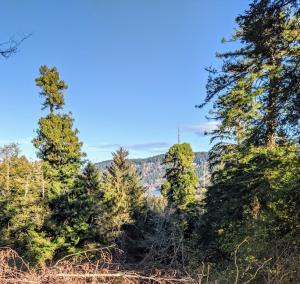 ±55 Acres Mcdonald Creek Road, Big Lagoon, CA 95570