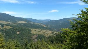 385 Acres Butte Creek Road, Kneeland, CA 95549