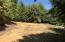 ± 80 Acres Greenwood Heights Drive, Kneeland, CA 95549